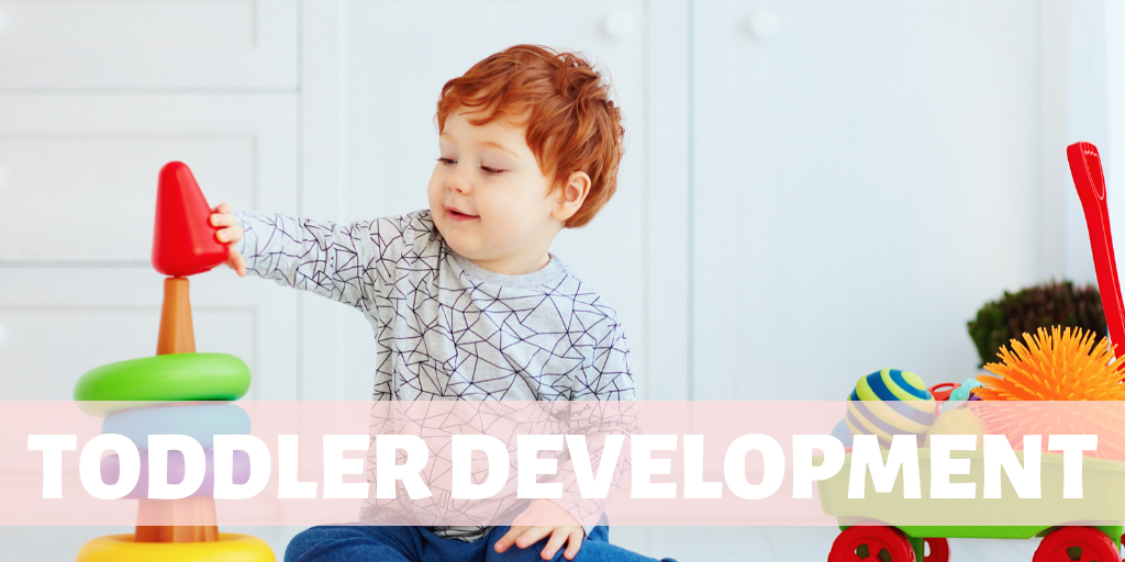 Toddler Development Link